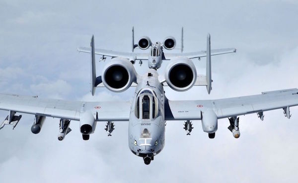 U.S. Air Force A-10 Thunderbolt II (122nd Fighter Wing)
